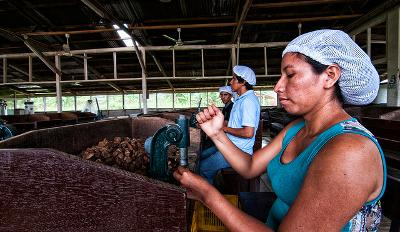 CC BY-NC 2.0, Photo by Marco Simola for Center for International Forestry Research (CIFOR)