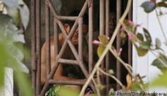 Migrant worker held captive